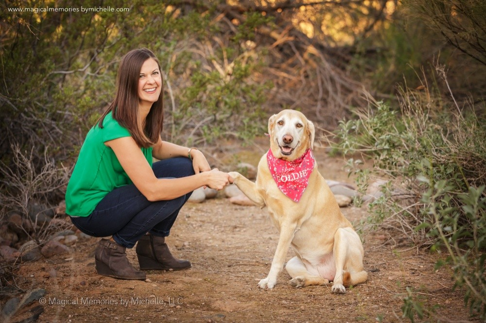 Dog Senior Pictures Mesa Animal Photographer
